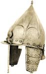 """""""Polish"""" Helmet"""