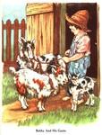 The Brimful Book.  A Collection of Mother Goose Rhymes and Animal Stories.  ABC - Image 2